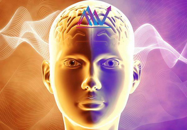 عملکرد مغز و ذهن